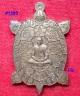 พญาเต่าเรือนมหายันต์เรียกทรัพย์ หลังเรียบจารมือตะกรุดเงิน หลวงพ่อสนั่น วัดกลางราชครูธาราม ปี2556