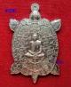 พญาเต่าเรือนมหายันต์เรียกทรัพย์ หลังเรียบจารมือตะกรุดทองคำ หลวงพ่อสนั่น วัดกลางราชครูธาราม ปี2556