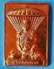 เหรียญปักกลด ลป.มั่น ภูริทัตโต (ลต.บุญหนา อธิฐานจิต) รุ่น กัมมัฎฐาน ปี 59 ทองแดงผิวไฟ สวยแชมป์